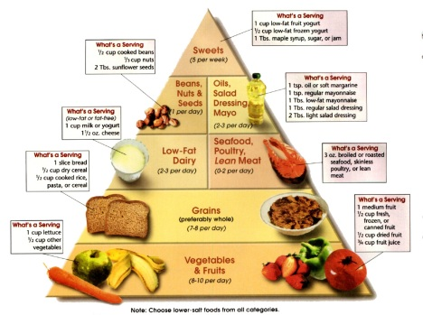 Dash Diet Food Pyramid