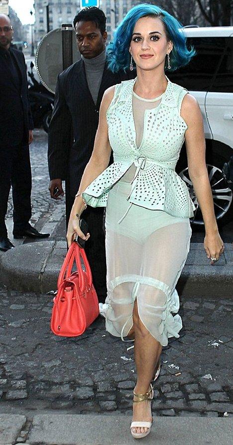 Katy Perry Vera Wang Dress
