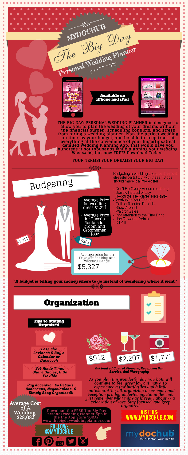 Wedding Planning Infographic