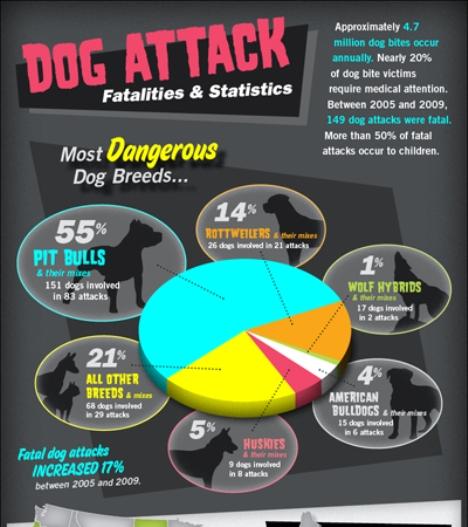 Dog Bite Injury Statistics